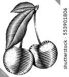 engraved isolated vector... | Shutterstock .eps vector #553901806
