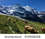 swiss mountains  | Shutterstock . vector #553908358