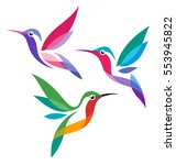stylized birds   hummingbirds | Shutterstock .eps vector #553945822