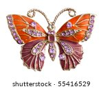 Jewelry Butterfly Isolated On...