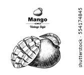 vector background with mango.... | Shutterstock .eps vector #554174845