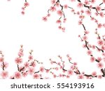 sakura blossom background... | Shutterstock .eps vector #554193916