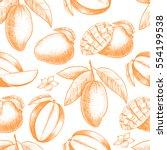 vector mango  hand drawn sketch.... | Shutterstock .eps vector #554199538