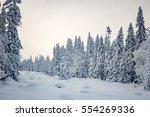 southern urals. zyuratkul.... | Shutterstock . vector #554269336