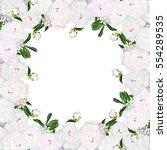 frame of white peonies.... | Shutterstock . vector #554289535