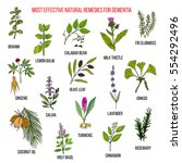 Best Herbal Remedies For...