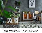 grey room with cactus in... | Shutterstock . vector #554302732