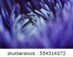 macro art abstract. flower in... | Shutterstock . vector #554314372