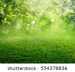 spring grass background | Shutterstock . vector #554378836