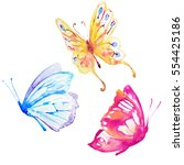 butterfly watercolor on a white  | Shutterstock . vector #554425186