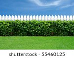 White Fence And Green Grass On...