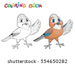 coloring book with jay bird.... | Shutterstock .eps vector #554650282