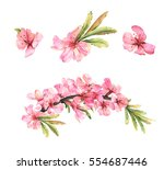 Almond Blossom. Set Of...