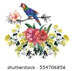 watercolor hand drawn colorful... | Shutterstock . vector #554706856