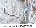 winter background of snow and...   Shutterstock . vector #554778352