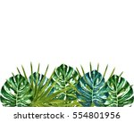 watercolor tropical leaves... | Shutterstock . vector #554801956
