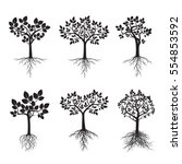 Black Trees With Roots. Vector...