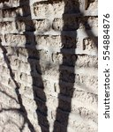 Small photo of Tree Shadows Silhouette Adobe Brick Wall In Marfa West Texas