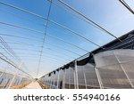 greenhouse greenhouse... | Shutterstock . vector #554940166