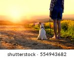 Stock photo girl with dog looking sun set in flower field 554943682