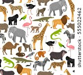 seamless pattern with african... | Shutterstock .eps vector #555022462