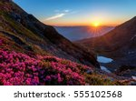 Stock photo sunrise in the mountains landscape with rhododendrons in foreground in rodnei mountains 555102568