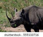 Masai Mara And Serengeti Safar...