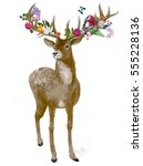 beautiful deer with floral... | Shutterstock . vector #555228136