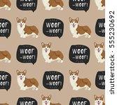 dog welsh corgi pembroke vector ... | Shutterstock .eps vector #555230692