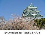 Nagoya castle and ume flower in Japan