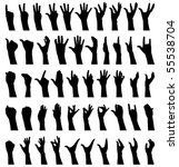 Fifty Female Hands Gesturing...