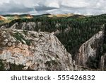 a beautiful pine forest among... | Shutterstock . vector #555426832