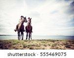 Young Tourist Couple Horseback...