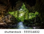 cave entrance in mulu national...   Shutterstock . vector #555516832