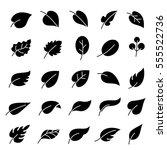 leaves icons set. | Shutterstock .eps vector #555522736