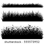 grass borders silhouette set... | Shutterstock .eps vector #555573952