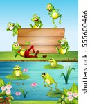 wood sign with many frogs by... | Shutterstock .eps vector #555600466