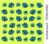 tropical leaves   vector... | Shutterstock .eps vector #555623482