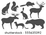 animal silhouette set. isolated ... | Shutterstock .eps vector #555635392
