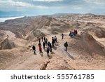 judean desert  israel  january... | Shutterstock . vector #555761785