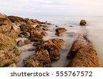 bahia honda beach at sun set.... | Shutterstock . vector #555767572