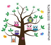 vector set of a colorful owls... | Shutterstock .eps vector #555783976
