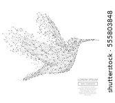 Abstract Colibri Polygonal ...