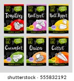 set of colorful labels in... | Shutterstock .eps vector #555832192