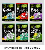 set of colorful labels in... | Shutterstock .eps vector #555833512