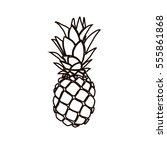 pineapple illustration | Shutterstock .eps vector #555861868