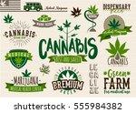 medical marijuana product label ... | Shutterstock .eps vector #555984382
