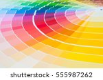 color palette with various... | Shutterstock . vector #555987262