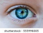 Macro Eyes Child Blue Details
