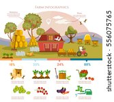 farm infographics template... | Shutterstock .eps vector #556075765